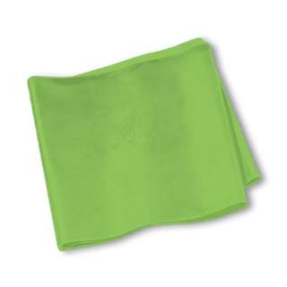 Brand New SPRI® Flat Band - 5-Foot- Green - Medium