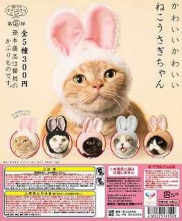 扭蛋 貓 兔子耳朵頭套