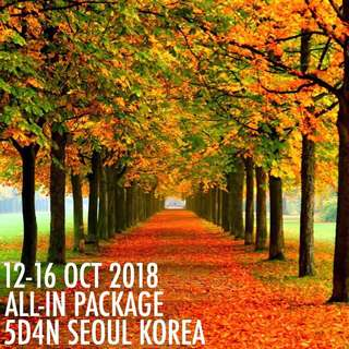 5D4N SEOUL KOREA ALL-IN PACKAGE BACKPACKERS STYLE