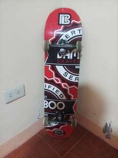 Skateboard setup