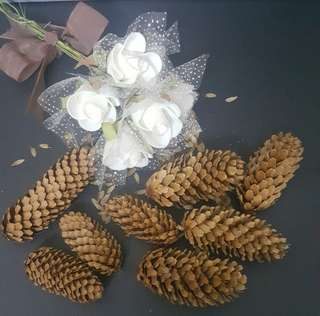 Natural Dried Pine Cones/Ornaments