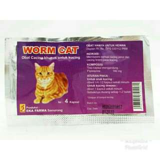 Obat cacing kucing worm cat