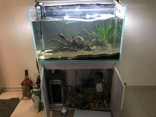 水晶魚缸,尺寸見圖,過濾+CO2+燈