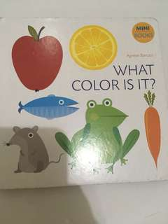 Buku Anak: What Color is It?