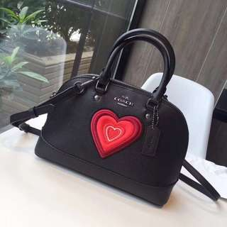 Coach Mini Sierra Satchel with Heart Embroidery