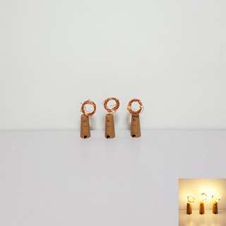[For Rent] 3 Wine Bottles Fairylights SS023