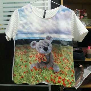 Teddy Tees