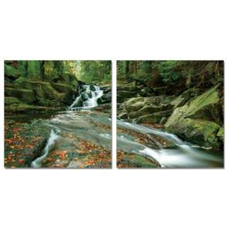 Waterfall Stream Acrylic Print 2 Piece