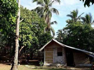 Farm with Bahay Kubo for Sale