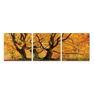 Yellow Tree Acrylic Print 3 Piece