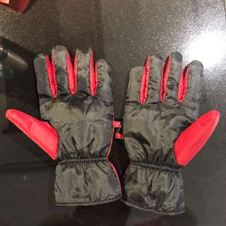 Winter Gloves (water proof)