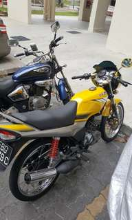 Kuning grey hly looking for swap.