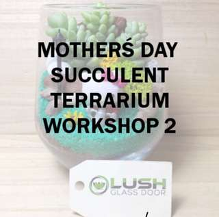 Mother's Day Terrarium Workshop