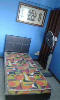 Master Room For FEMALE Tenant Only