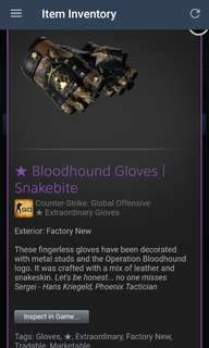 Factory New Bloodhound Gloves