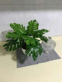 (Out of stock till further notice) (1 set @ $22) (2 sets @ $40) Monstera artificial plant