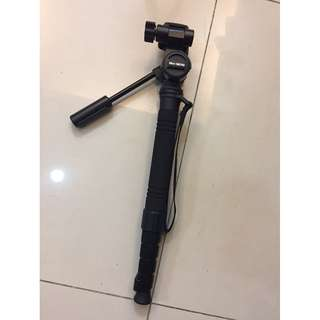 Monopod with Fluid head and quick release plate