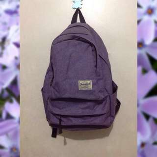 TECHNOPACK Purple Backpack