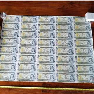 UNCUT SHEET 40 CANADIAN ONE DOLLAR BILLS UNCIRCULATED BANK NOTE OTTAWA 1973