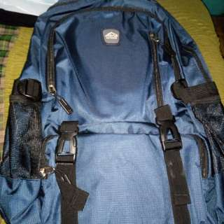 Selling bnew sena authentic backpack
