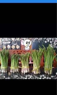 蘆筍-自家自產自銷無農藥