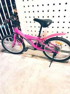 "Mertz Techno MTB 20"" Bicycle"