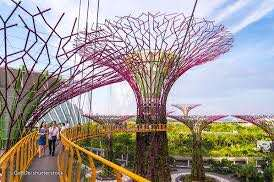 Garden By The Bay ❤️