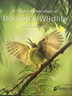 A Visual Representation of Borneo's Wildlife