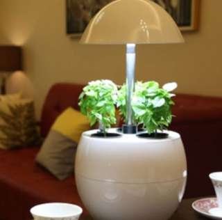 Hidroponic indoor garden pot