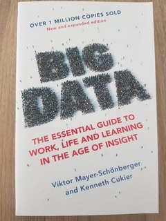Big Data By Viktor Mayer-Schonberger