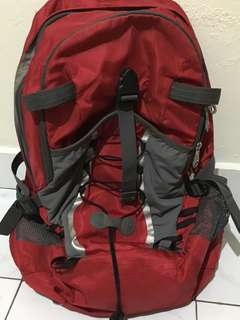 Forester bag for traveling