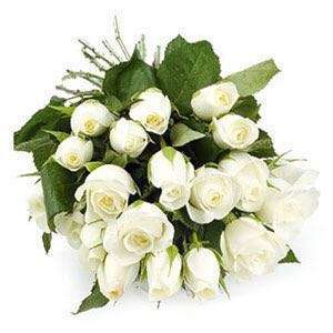 White 20 roses bouquet for selling