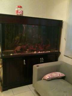 Aquarium to sell