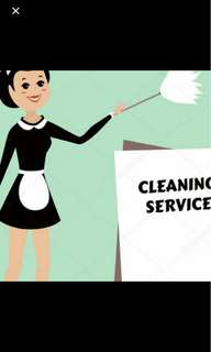 I will clean your house