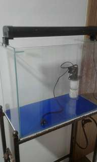 2ft clear glass Fish Tank