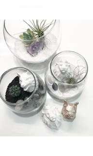 Monochrome Crystal Terrarium