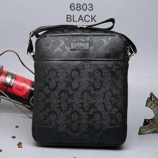 Coach mens bag