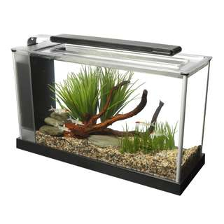 Fluval Spec V 19L Aquarium Tank (New Series)
