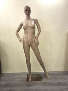 Full sized mannequin like new