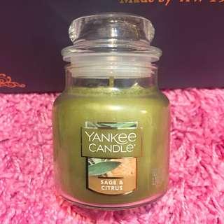 【全新】Yankee candle  Sage & Citrus 鼠尾草柑橘香氛瓶中燭