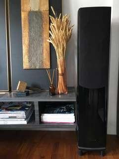 Top Tier Wharfedale Evo40 Floor Standing Speakers