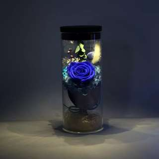 Mother Day Premium LED Glass Real Flower Display Bell Jar Dome Immortal Preservation Love shape Glass Jar Rose Colour Valentine