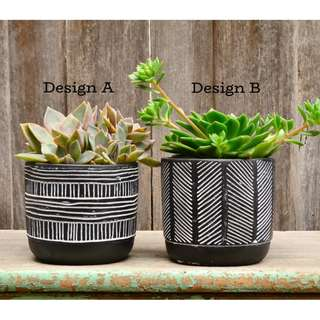 White and Black Monochrome 'Lines' Patterned Plant Pot Planter