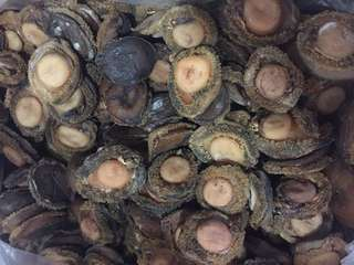 南非乾鮑魚 South African Dried Abalone