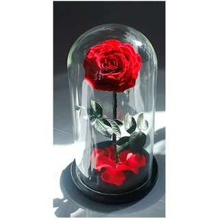 Premium Glass Real Flower Display Bell Jar Dome Immortal Preservation Preserved Love shape Glass Jar Rose Colour Mother's Day