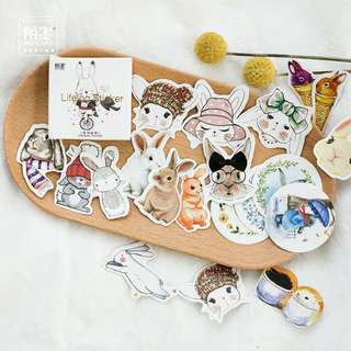 [ST] Boxed Stickers: Cute Bunny Rabbit