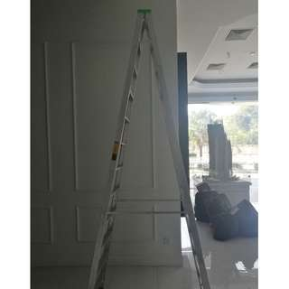 12 steps ladder