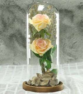 💥Popular Mother Day Gift💥 Eternity Flower in Glass Dome