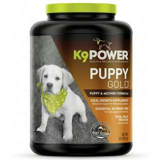 K9 Puppy Power Gold