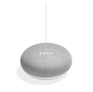 WTB Google Home Mini
